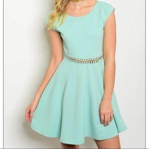 94630884ef ... Ladies Women Cute Sage Flare Skater Dress S M L Ladies Women Cute Lime  ...
